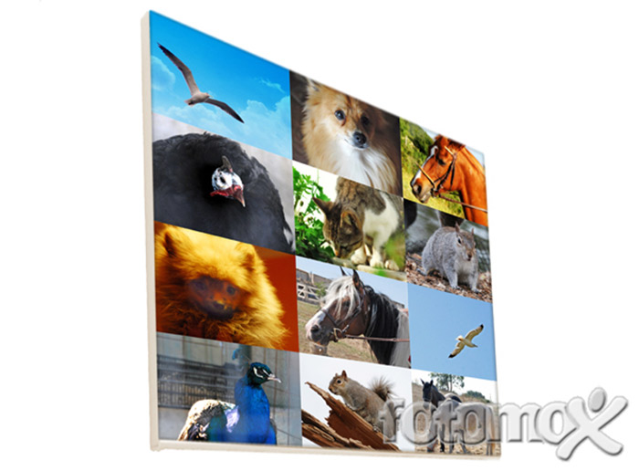 Foto su tela collage collage di foto stampati su tela for Tele d arredo